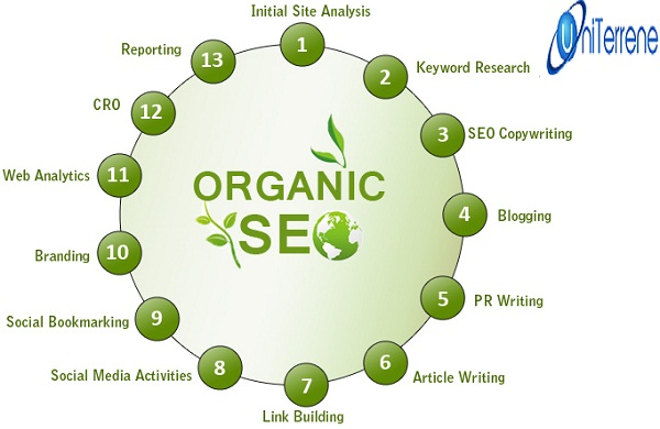 Why Organic SEO Services Are Highly Demanded Today? | UniTerrene.com